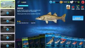 Download Fishing Clash game apk for android